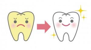 ホワイトニング用の歯磨き粉で本当に歯は白くなる?歯医者がその疑問に答えます!