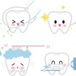 自宅で出来る歯周病予防について