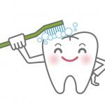 歯医者が教える!歯磨き粉の研磨剤入りと無しの効果の違い
