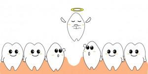 年齢を重ねても歯の本数は20本を保つ